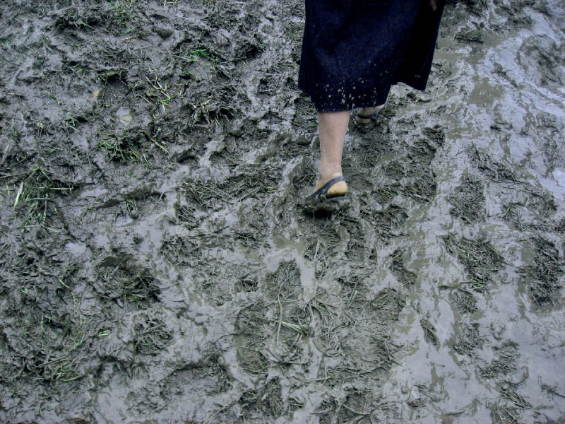 Walking Mud